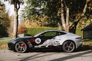 jaguar-after